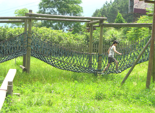 Sanke on Rope Bridge