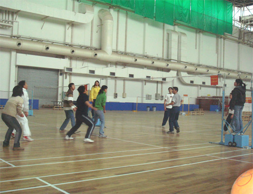 Office Volleyball Competition 1