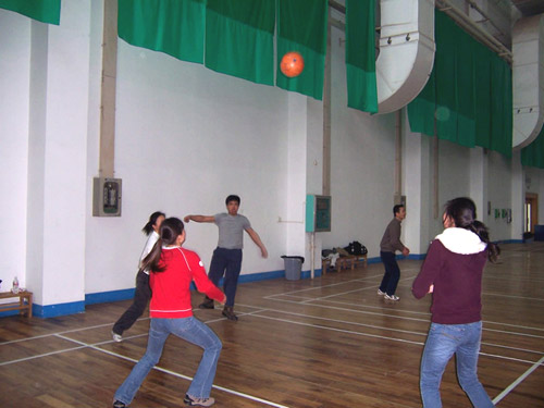 Office Volleyball Competition 9