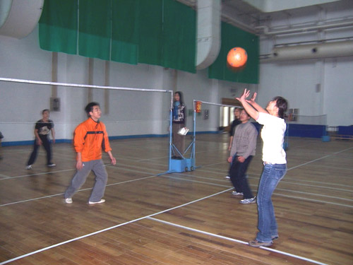 Office Volleyball Competition 8