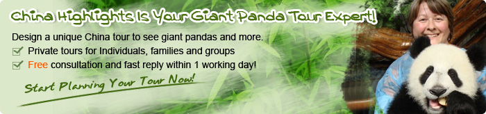 Customize a Panda Tour