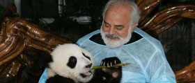 Chengdu panda keeper program trip