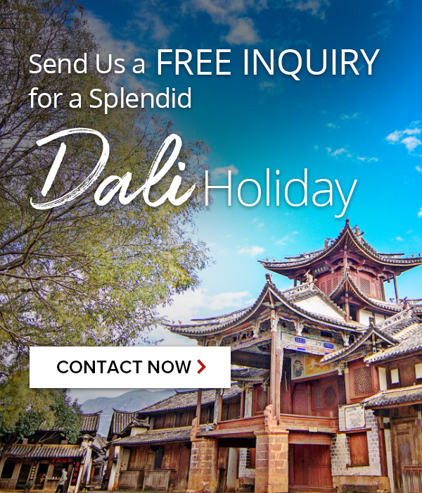 Contact us for Dali Tours