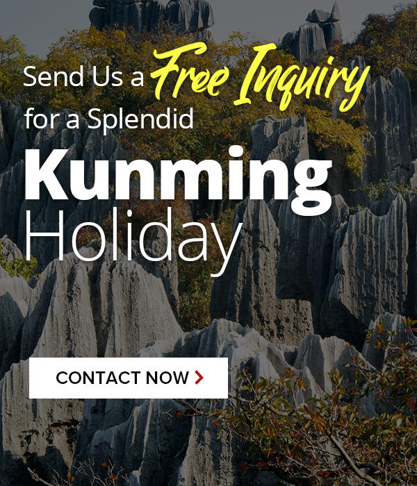 Contact us for Kunming tours