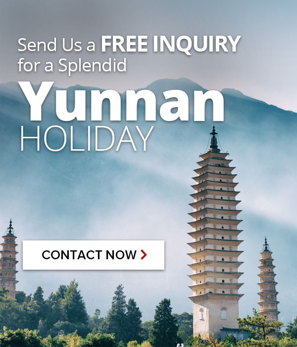 Contact us for Yunnan tours