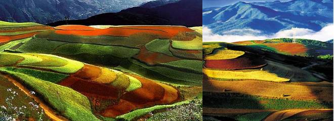 Dongchuan Red Land, Best Places to Travel in Early Summer