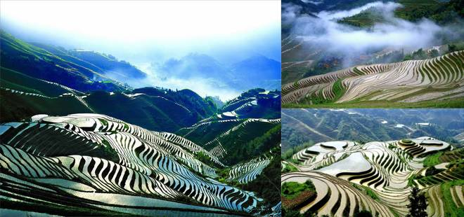 YLongji Rice Terraces, Best Places to Travel in Early Summer